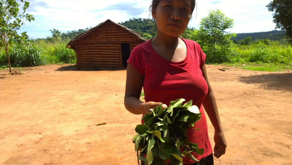 an indigenous woman showing her yerba mate, traditionally prepared