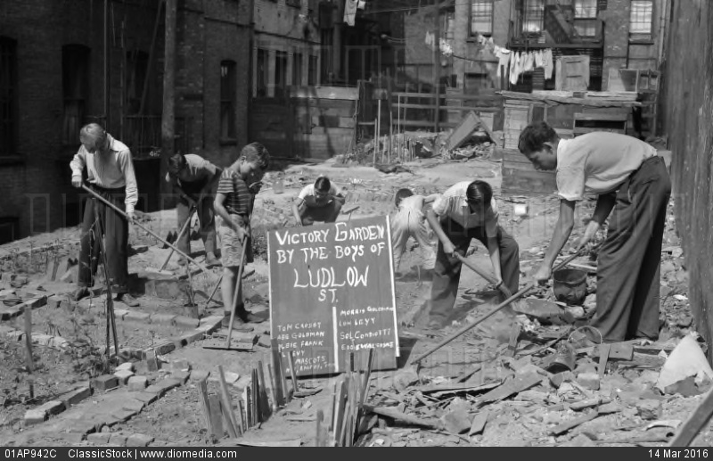 01AP942C; 1940s BOYS WORKING IN WARTIME VICTORY GARDEN LUDLOW STREET NEW YORK CITY LOWER EAST SIDE MANHATTAN WWII