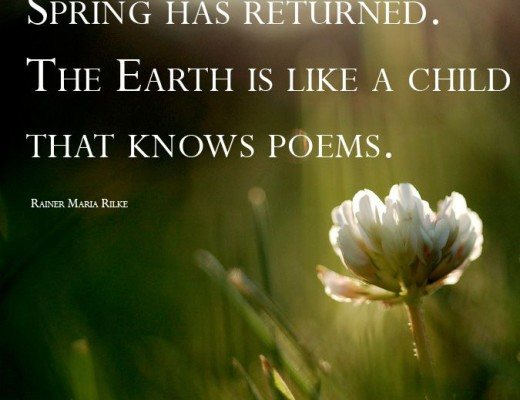 Spring Giddiness! in Poetry